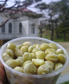 懐かしの函館公園ふかし豆